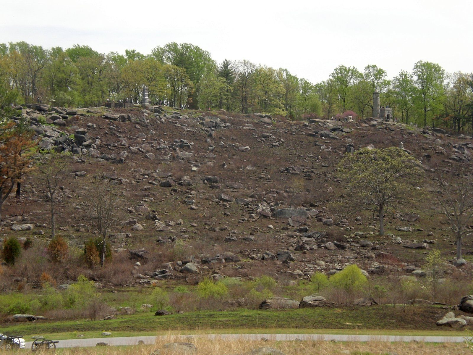 Little Round Top - 2017 Burn (10).JPG